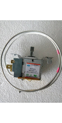 Thermostat electronic WDF26N