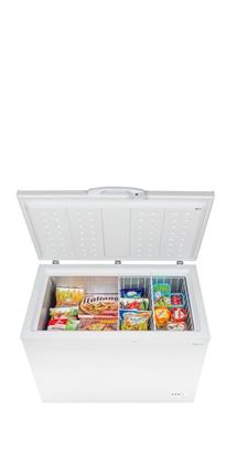Freezer INTER L 300